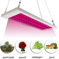 600W LED Grow Light Hydroponic Full Spectrum for Indoor Plan