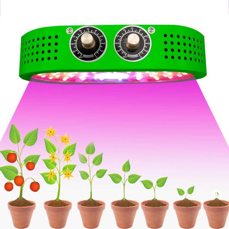 cob led grow light for indoor plants