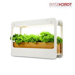 LED Plant Lighting Full Grow Stand Rack Automatic Timer